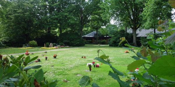 Grabfeld auf dem Friedhof in Hassel mit großem Bäumen und der Trauerhalle im Hintergrund.
